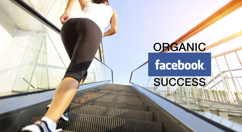 Facebook Organic Success